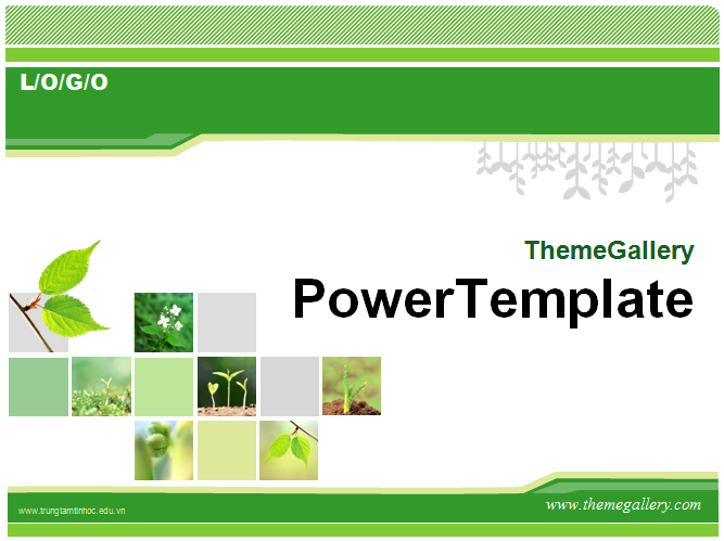 Theme Powerpoint co nhieu bieu do dep